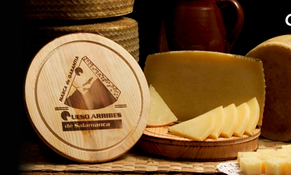 Queso Arribes